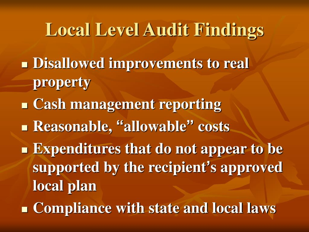 Local Level Audit Findings