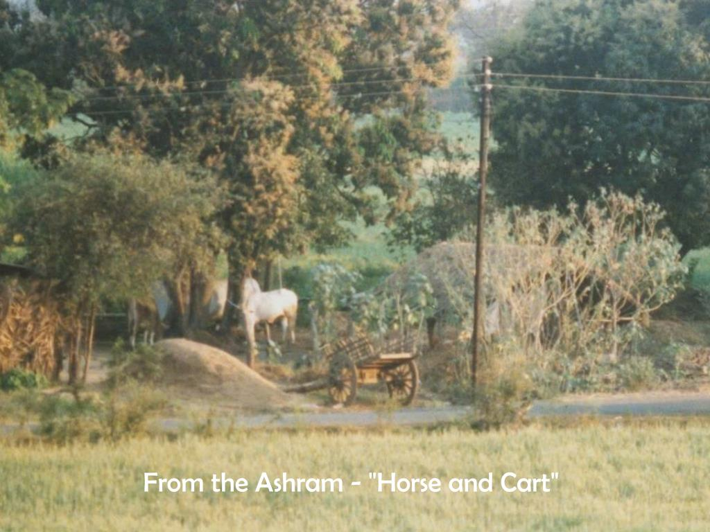 """From the Ashram - """"Horse and Cart"""""""