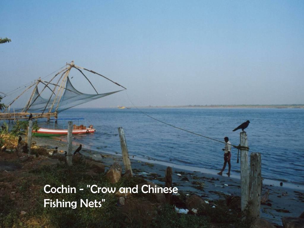 "Cochin - ""Crow and Chinese Fishing Nets"""