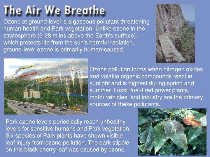 Ozone at ground-level is a gaseous pollutant threatening human health and Park vegetation. Unlike oz...