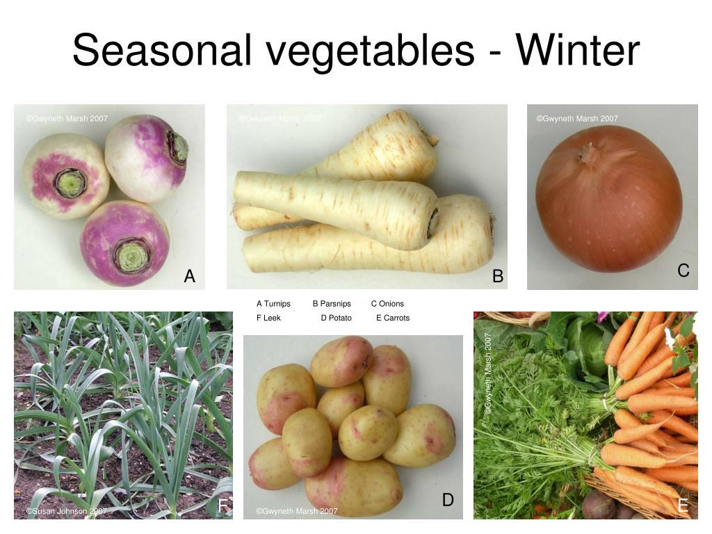Seasonal vegetables - Winter