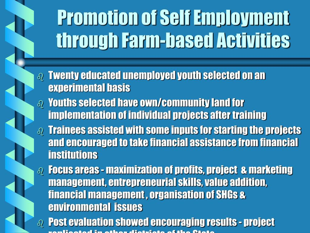 Promotion of Self Employment through Farm-based Activities