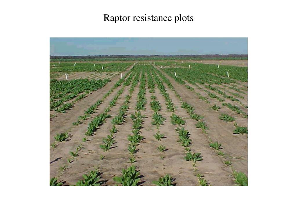 Raptor resistance plots