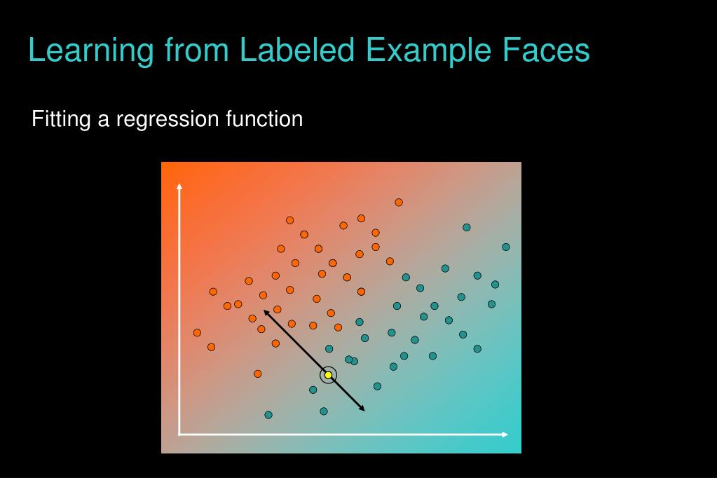 Learning from Labeled Example Faces