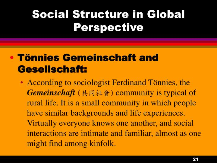 Social Structure in Global Perspective