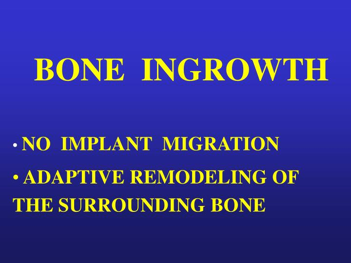 BONE  INGROWTH