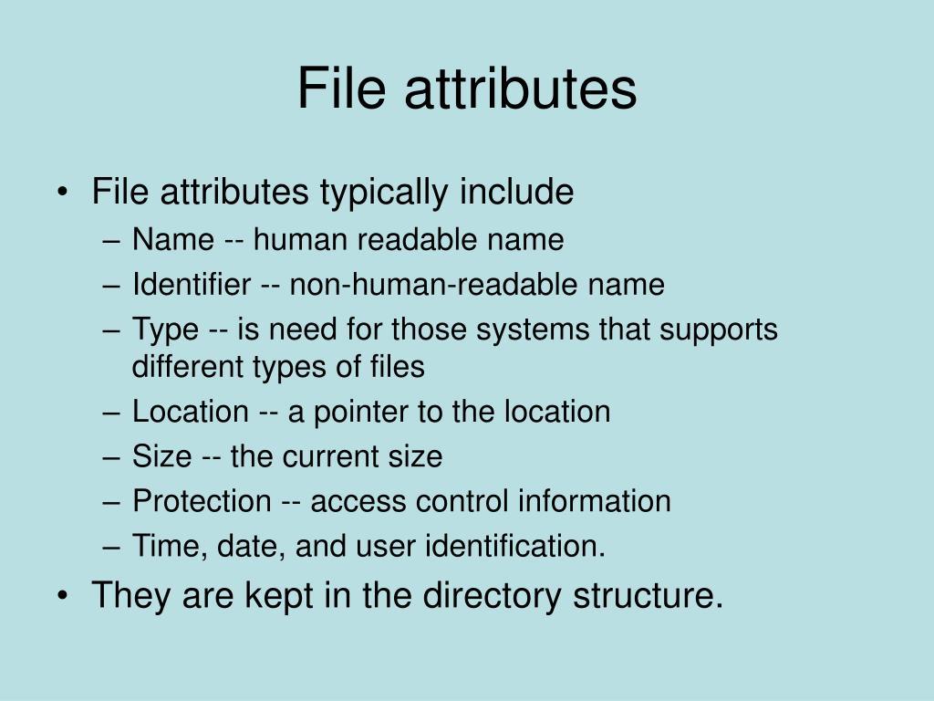 File attributes