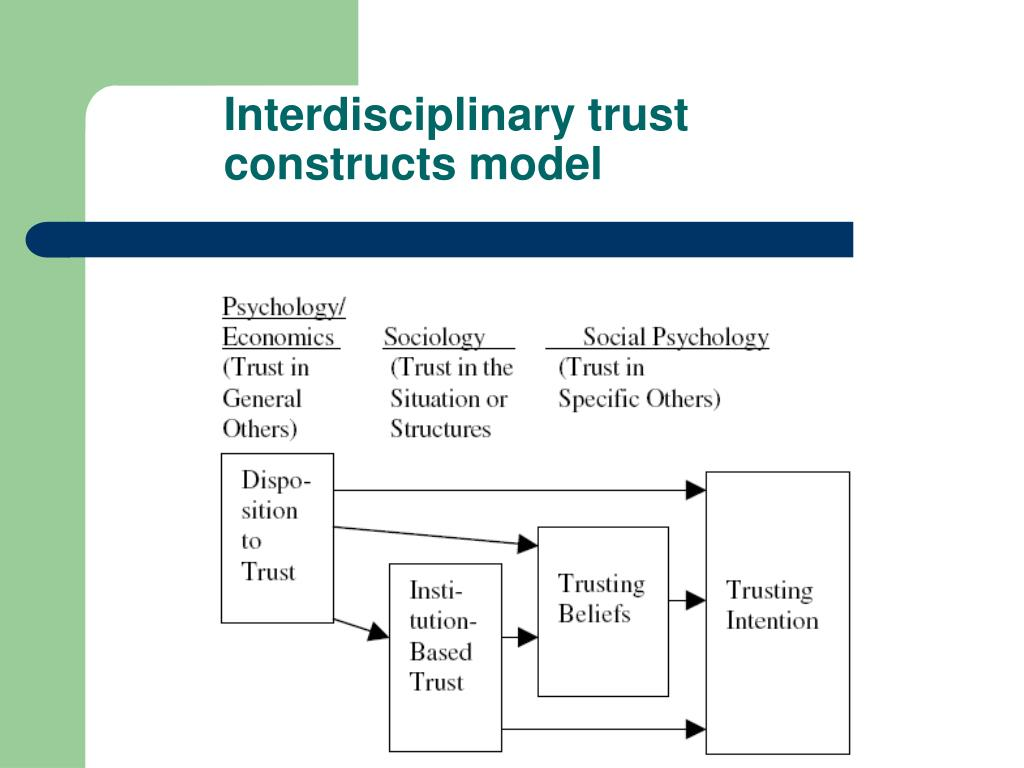 Interdisciplinary trust constructs model