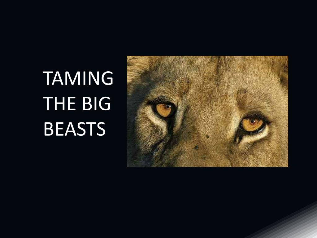 TAMING THE BIG BEASTS