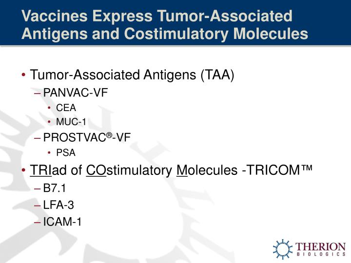 Vaccines Express Tumor-Associated Antigens and Costimulatory Molecules