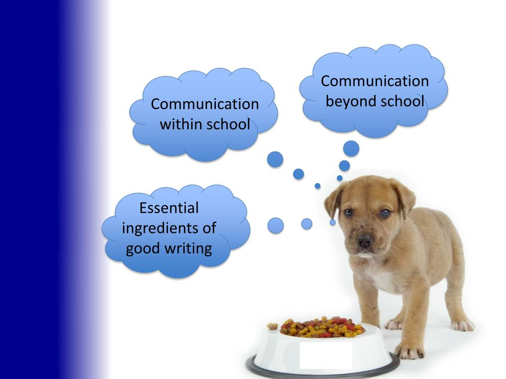 Communication beyond school