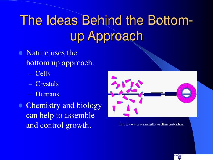 bottom up approach A bottom-up approach could involve presenting letters one by one to a neural network that is configured somewhat like a retina, and reinforcing neurons that happen to respond more vigorously to the presence of w than to the presence of aany other letter.