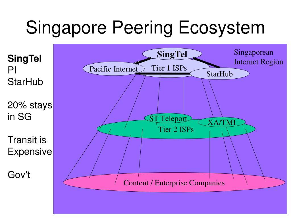 Singapore Peering Ecosystem