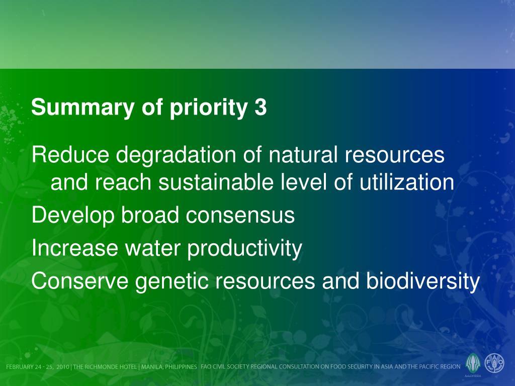 Summary of priority 3