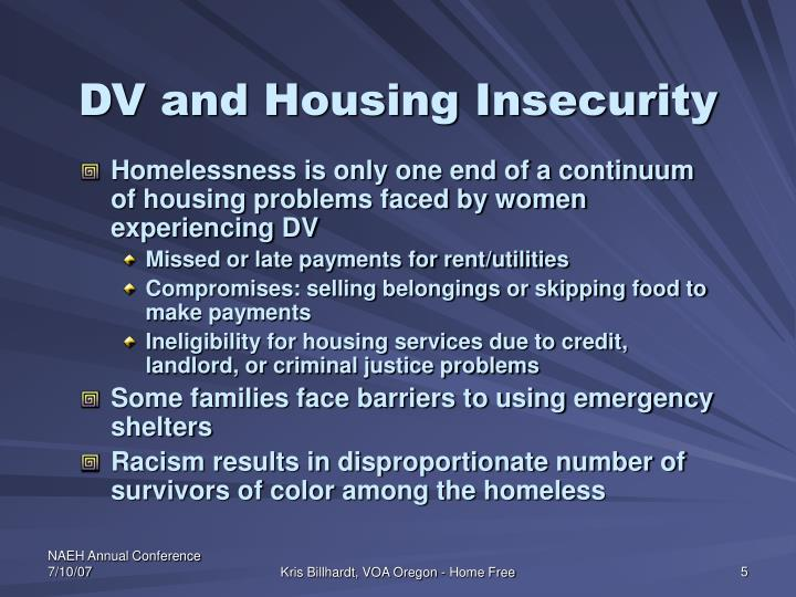 DV and Housing Insecurity