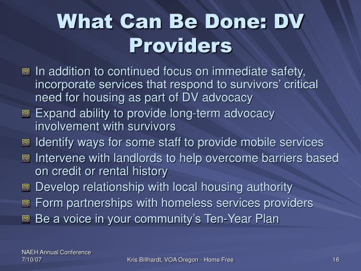 What Can Be Done: DV Providers