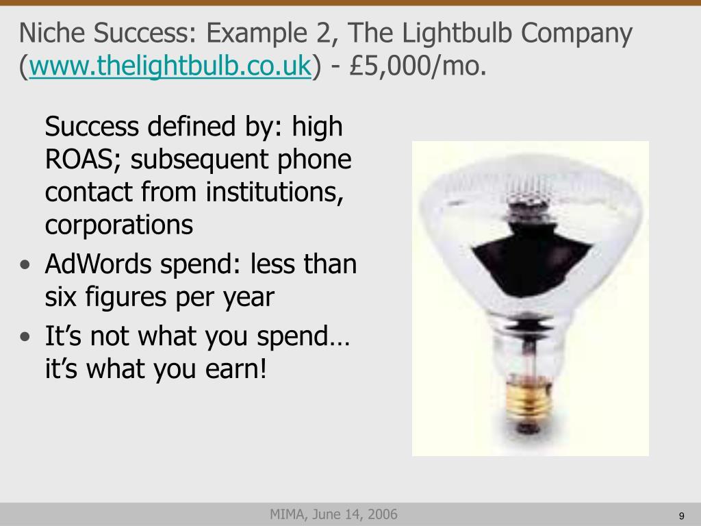 Niche Success: Example 2, The Lightbulb Company