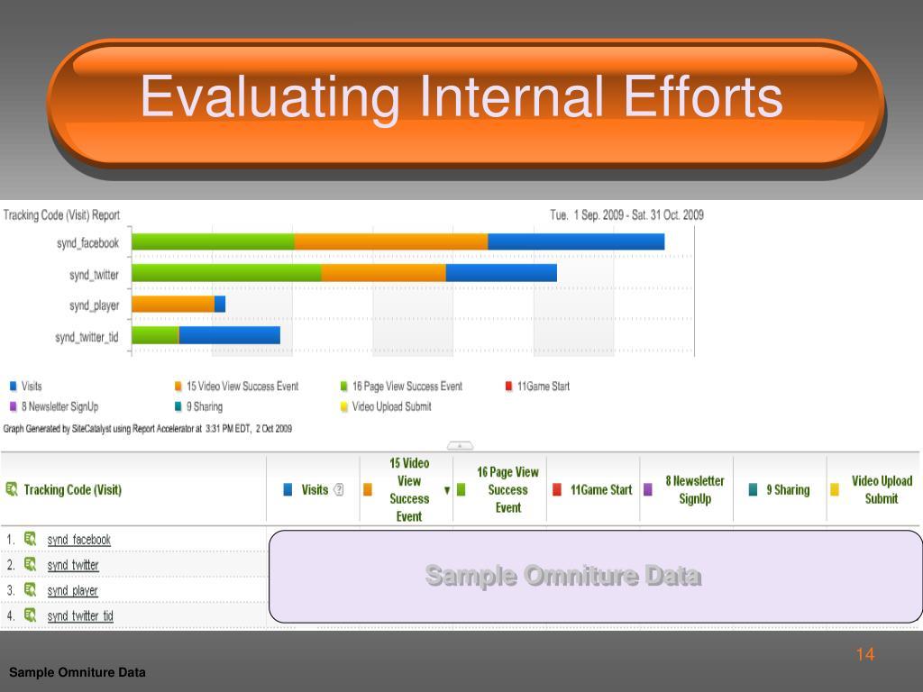 Evaluating Internal Efforts