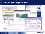 common web applications