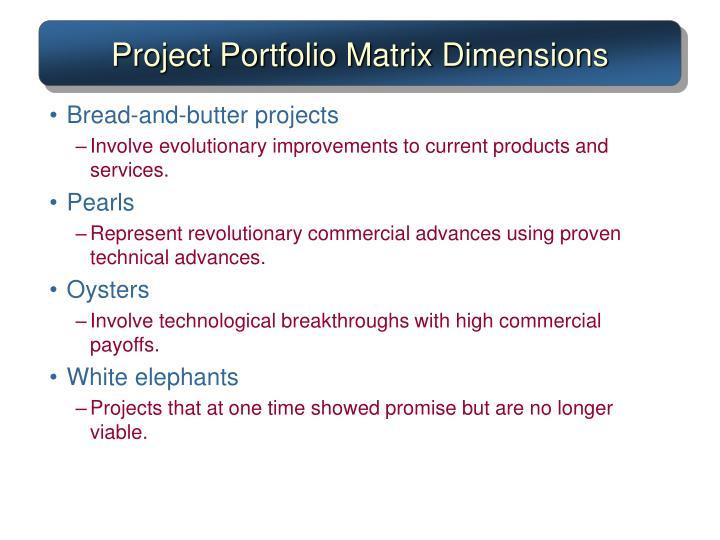 Project Portfolio Matrix Dimensions