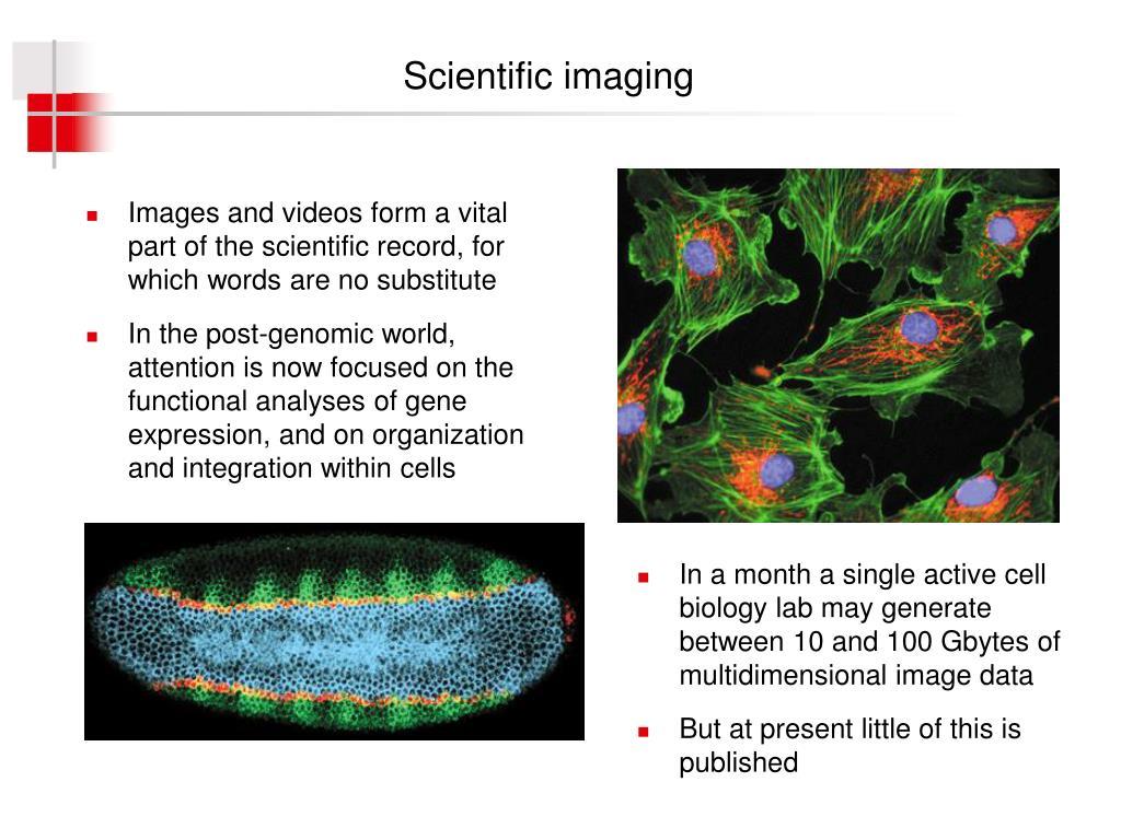 Scientific imaging