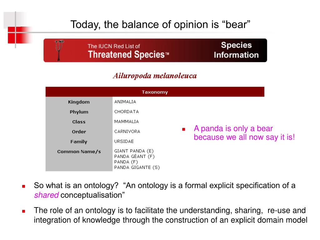 """Today, the balance of opinion is """"bear"""""""