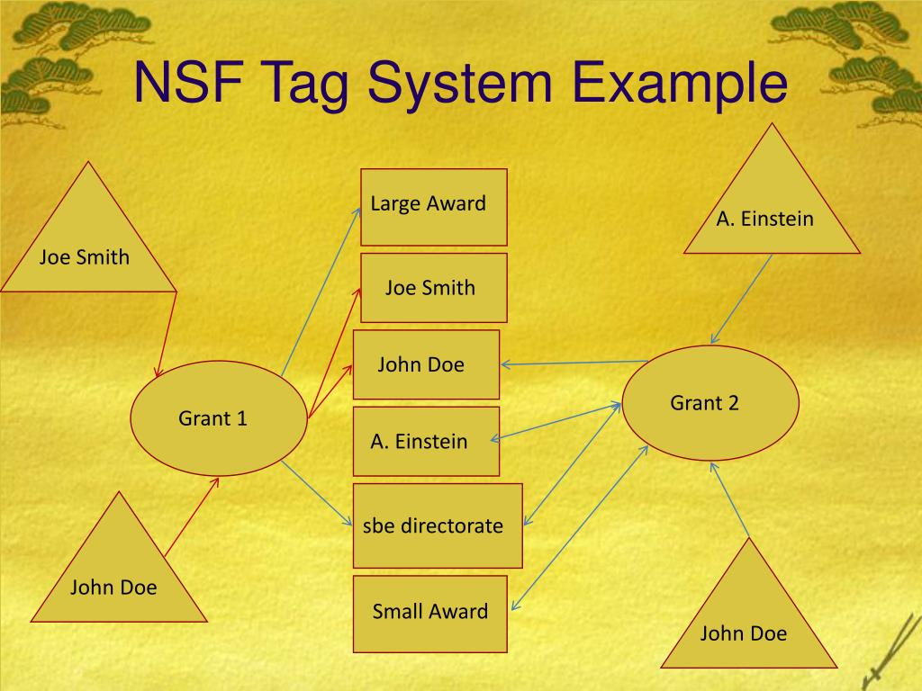 NSF Tag System Example