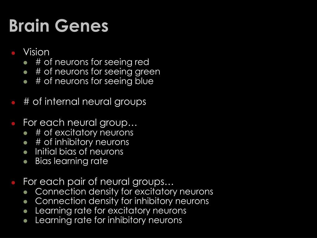 Brain Genes