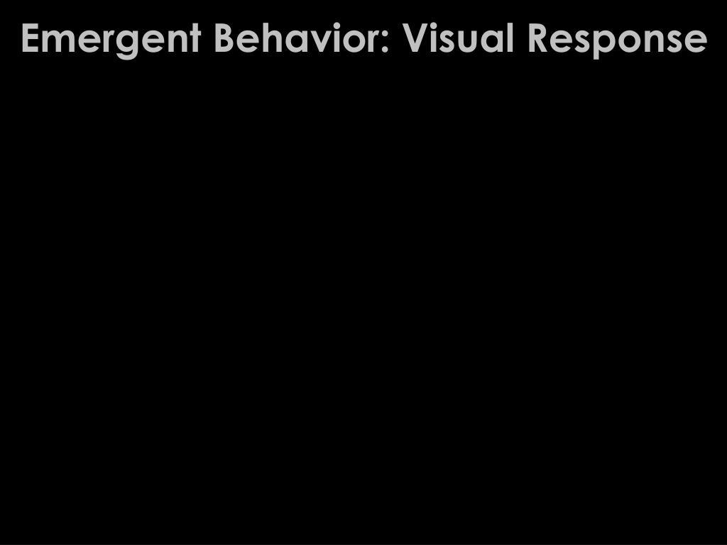 Emergent Behavior: Visual Response