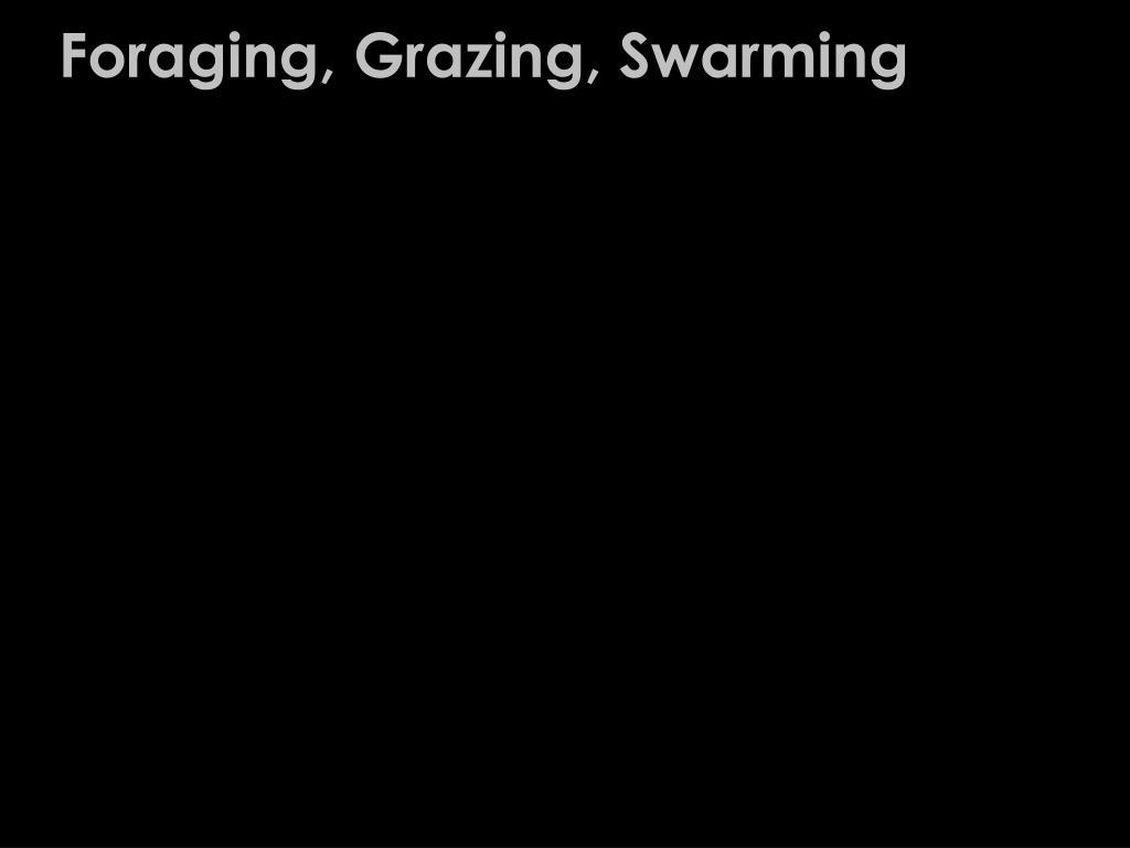 Foraging, Grazing, Swarming