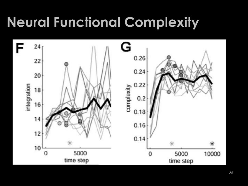 Neural Functional Complexity