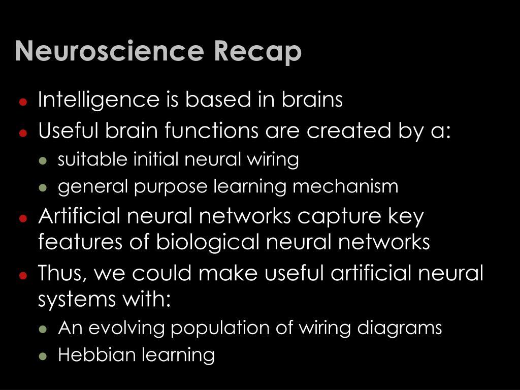 Neuroscience Recap