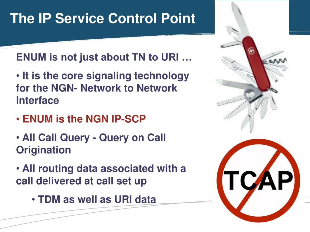 The IP Service Control Point