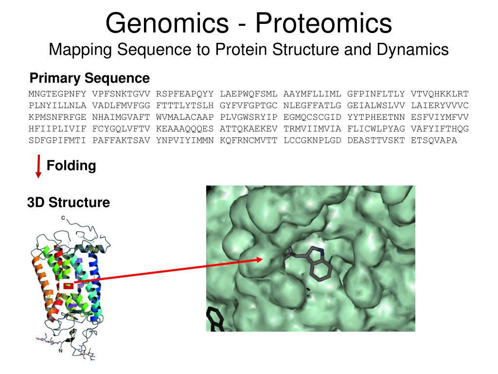 Genomics - Proteomics