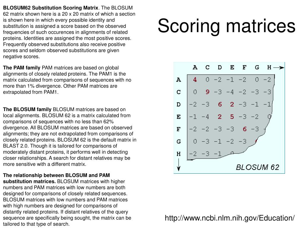 BLOSUM62 Substitution Scoring Matrix