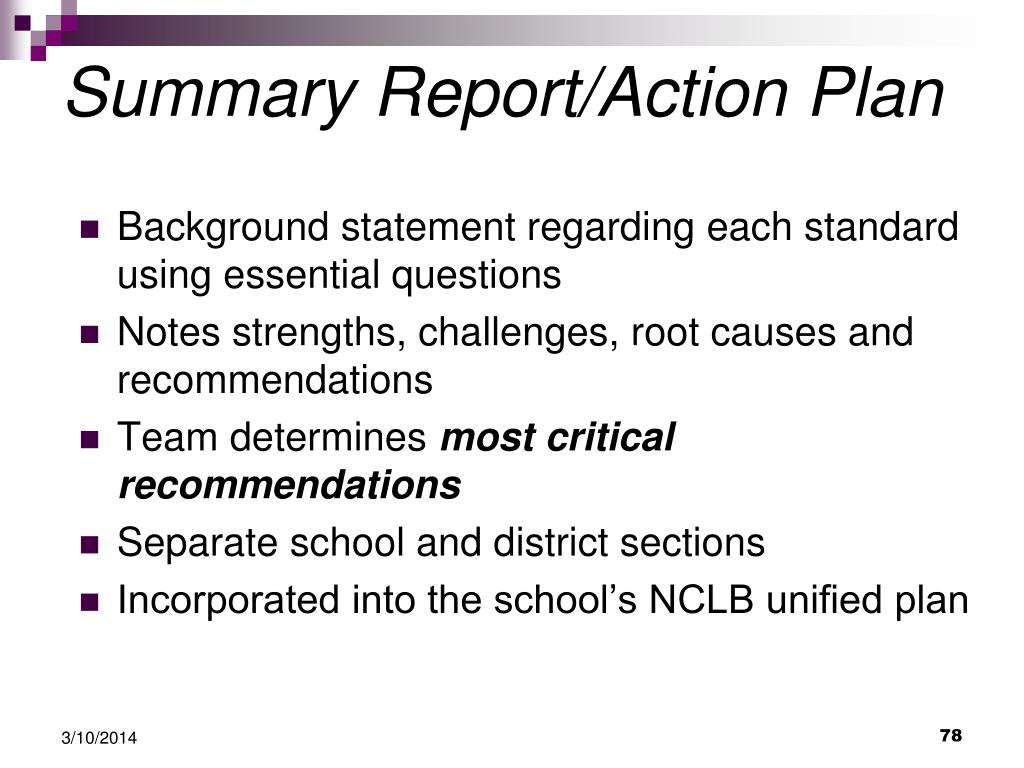 Summary Report/Action Plan