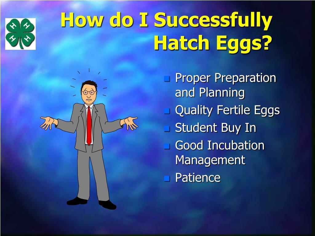 How do I Successfully