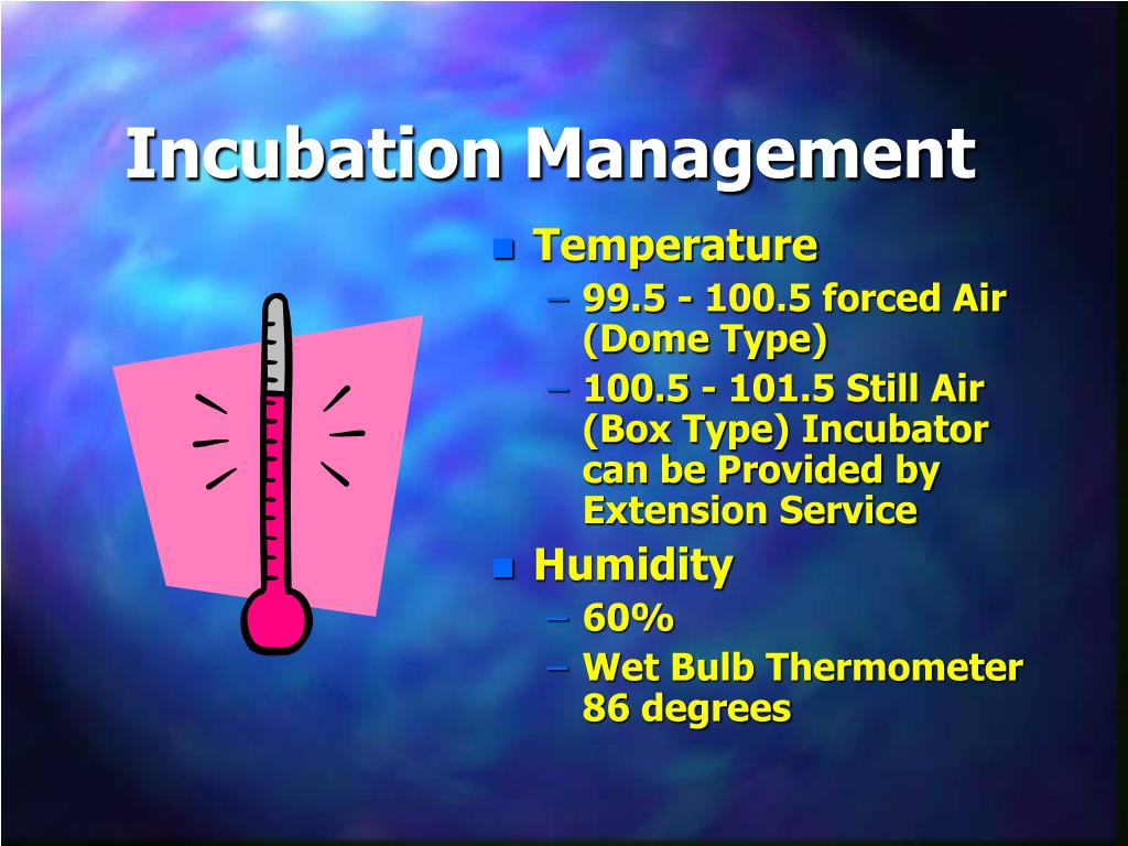 Incubation Management