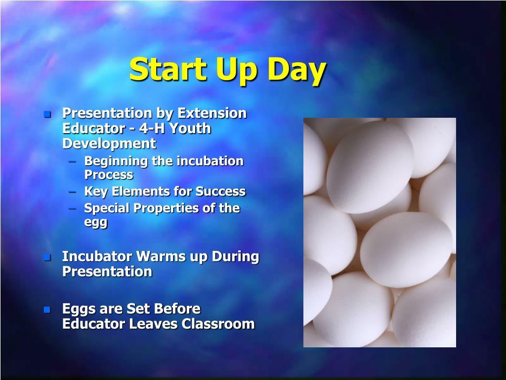 Start Up Day