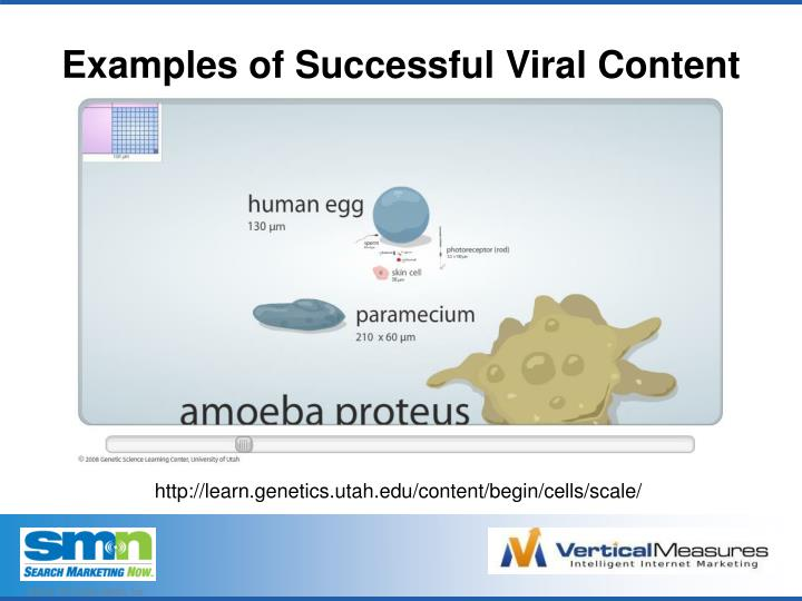 Examples of Successful Viral Content