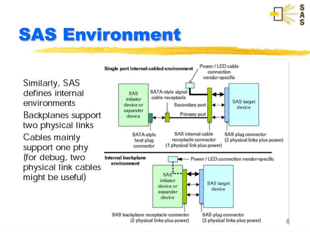 SAS Environment