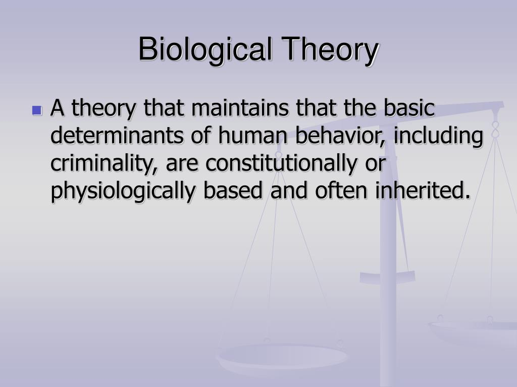 biological theories and criminal behavior essay Multiple and diverse biological theories: ca 1930-2000 speculated about links between criminal behavior and brain is from a second essay by.