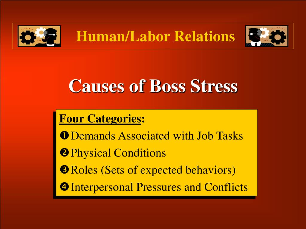 Causes of Boss Stress