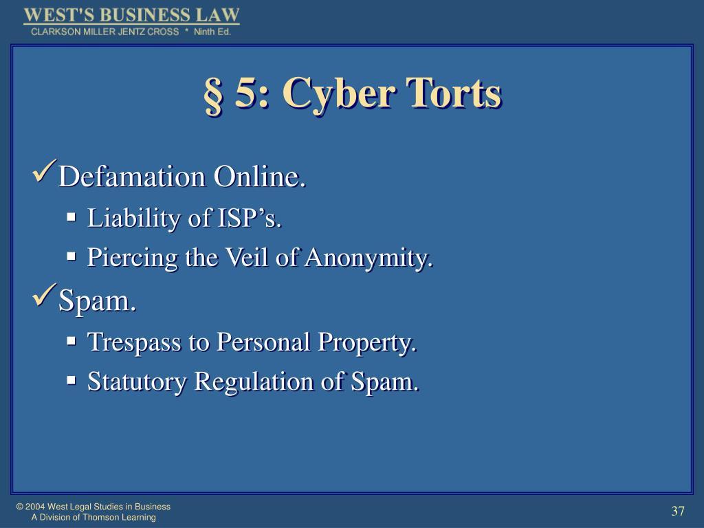 § 5: Cyber Torts