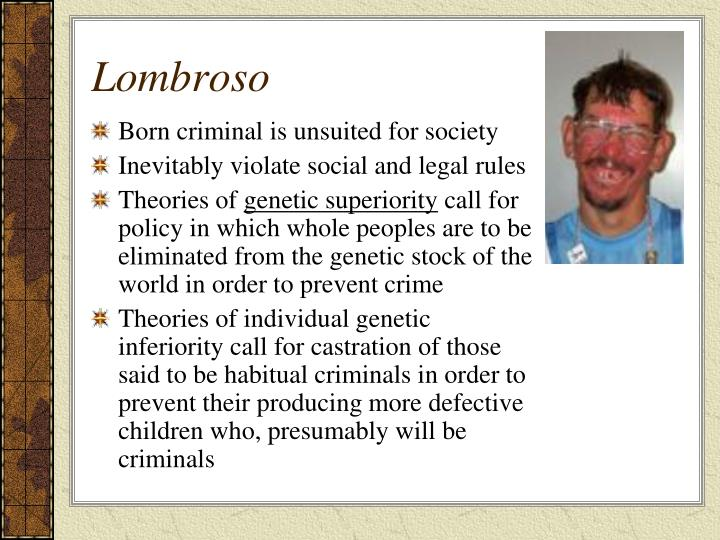 lombroso and the female offender Juvenile offenders—children's courts—institutions for female offenders—minor offenders, criminals of passion, political offenders, and criminaloids—probation system and indeterminate sentence—reformatories—penitentiaries—institutes for habitual criminals—penal colonies—institutions for born criminals and the morally insane.