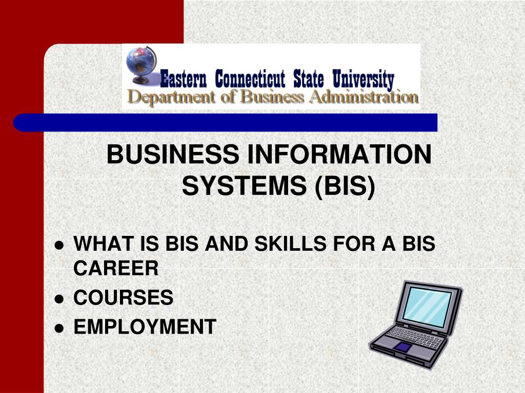 BUSINESS INFORMATION SYSTEMS (BIS)