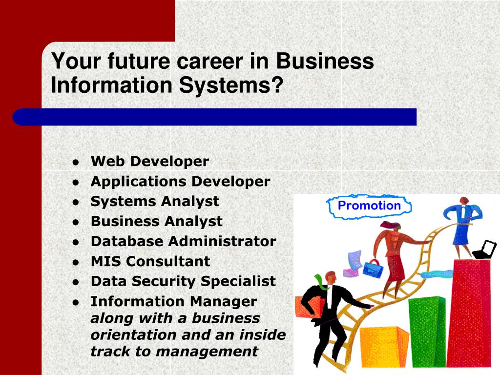 Your future career in Business Information Systems?
