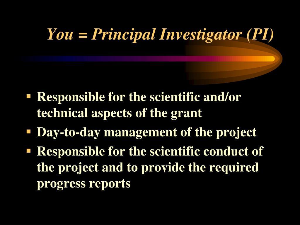 You = Principal Investigator (PI)
