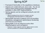 spring aop33