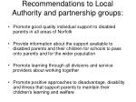 recommendations t o local authority and partnership groups